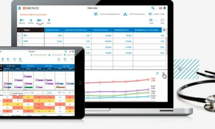 INTRODUCTION TO SCHEDULING SOFTWARE FOR HEALTHCARE